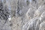 fonds-ecran_neige_photos-HD_11