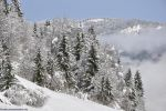 fonds-ecran_neige_photos-HD_3