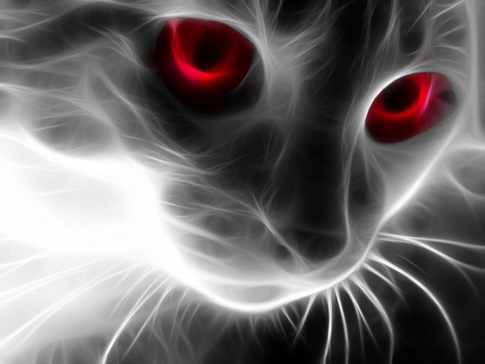 chat-yeux-rouges-fonds-d-ecran-effets-lumiere-et-retouche-photo_01