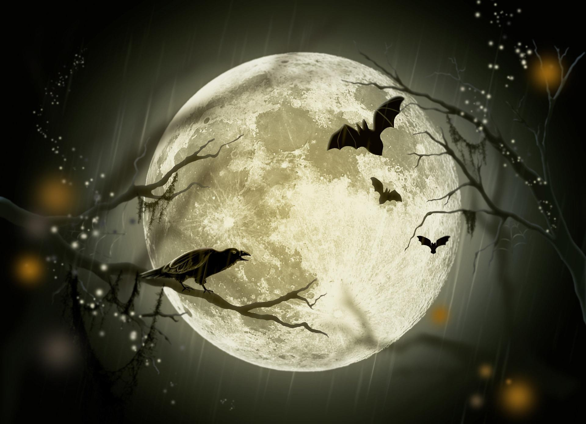 halloween-wallpaper_free-to-download_12