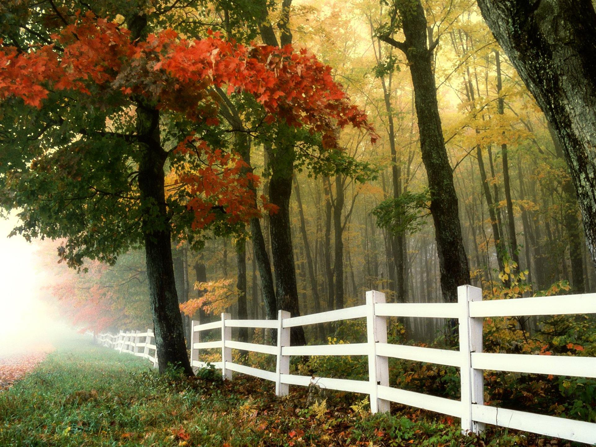 automne-paysage_wallpapers-free_2