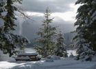 photos-hiver-HD_make-a-wallpaper-for-free_sapins