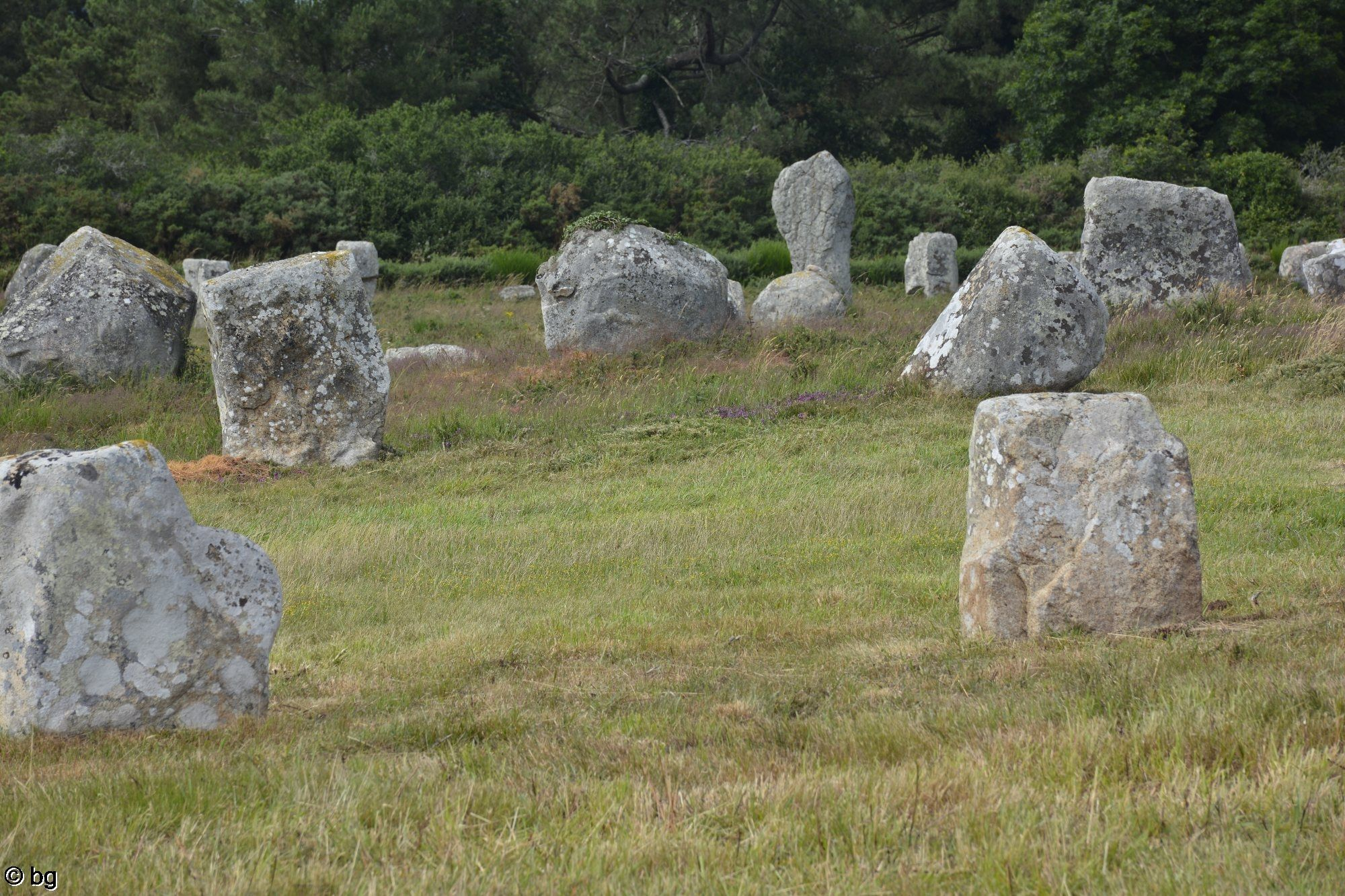 dolmen-de-carnac-photo