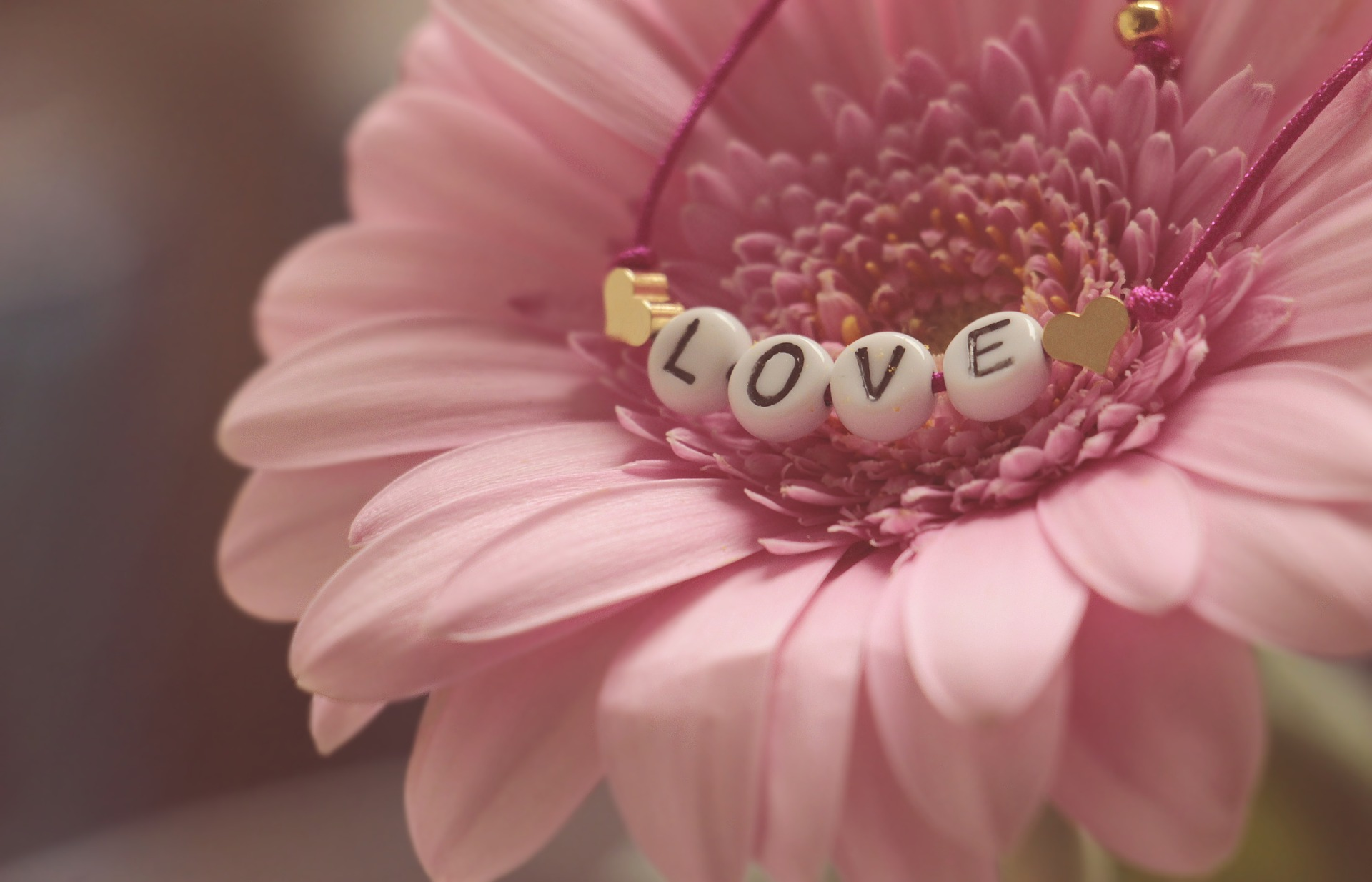 love-amour-universel