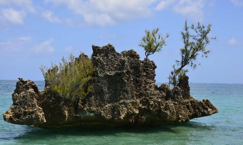 île du bénitier