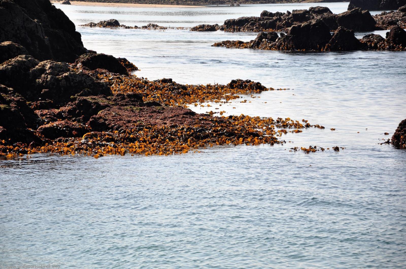 bretagne-plage-france_photos_13