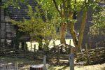 archeosite_les-rues-des-vignes_59258_france_vues-du-site_04