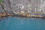 norvege_falaise-et-moules_dans-le-fjord_en-navigation
