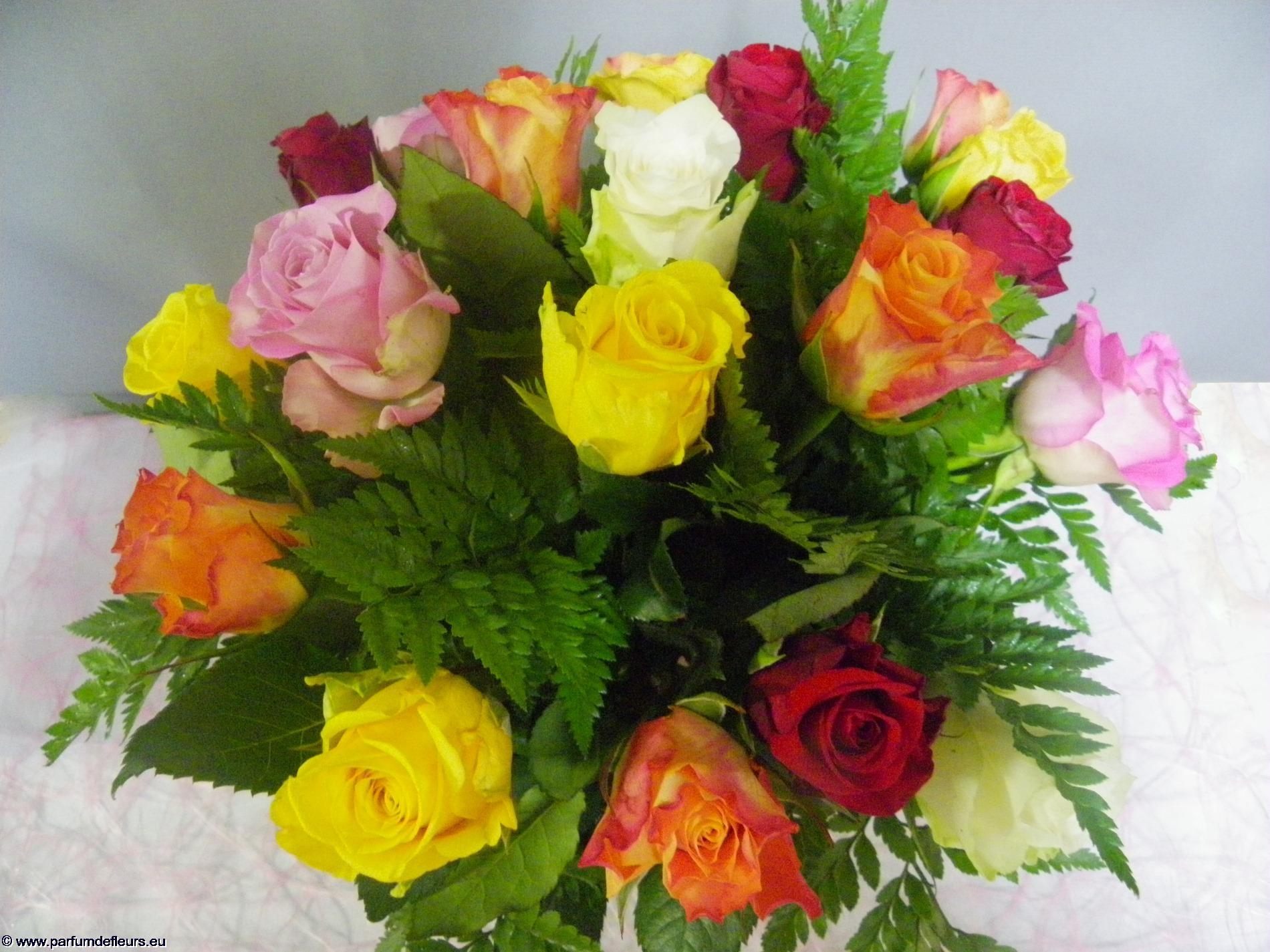 offrir-des-fleurs_fonds-ecran_01