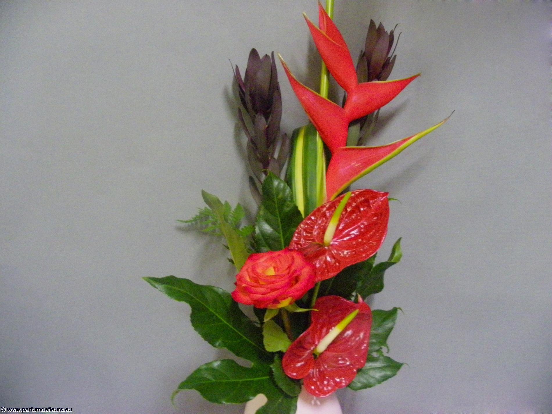 offrir-des-fleurs_fonds-ecran_02