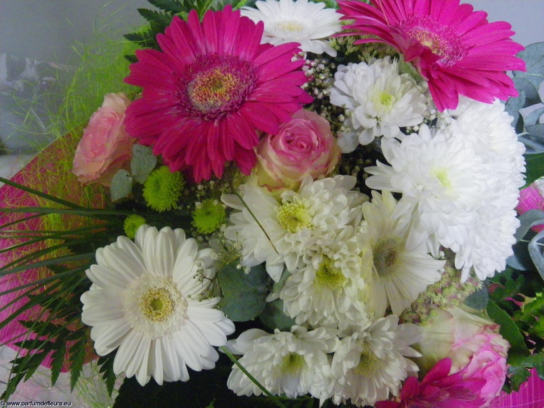 offrir-des-fleurs_fonds-ecran_09