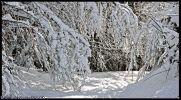 neige-panoramique-retouche-photo-pour-un-concours