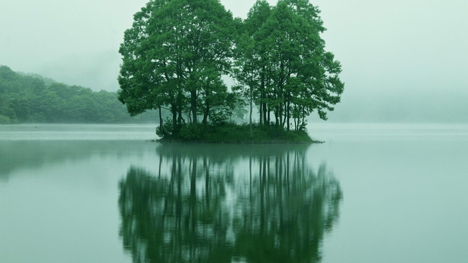 image-et-fonds-ecran-widescreen-arbres-telechargement-gratuit-2