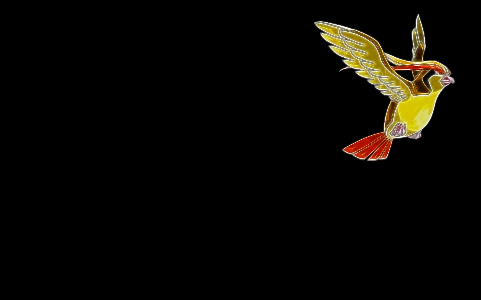 pidgeot-pokemon-wallpaper-free-download