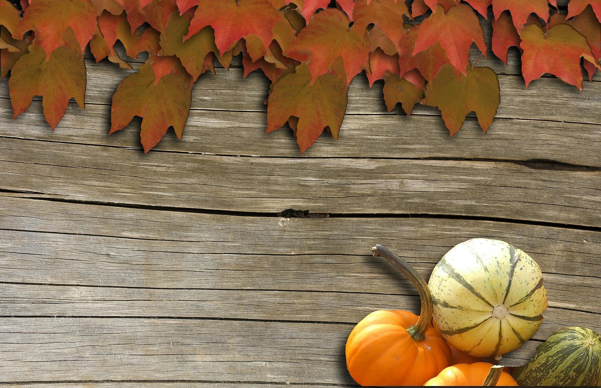 automne-montages-photos-avec-des-feuilles_3