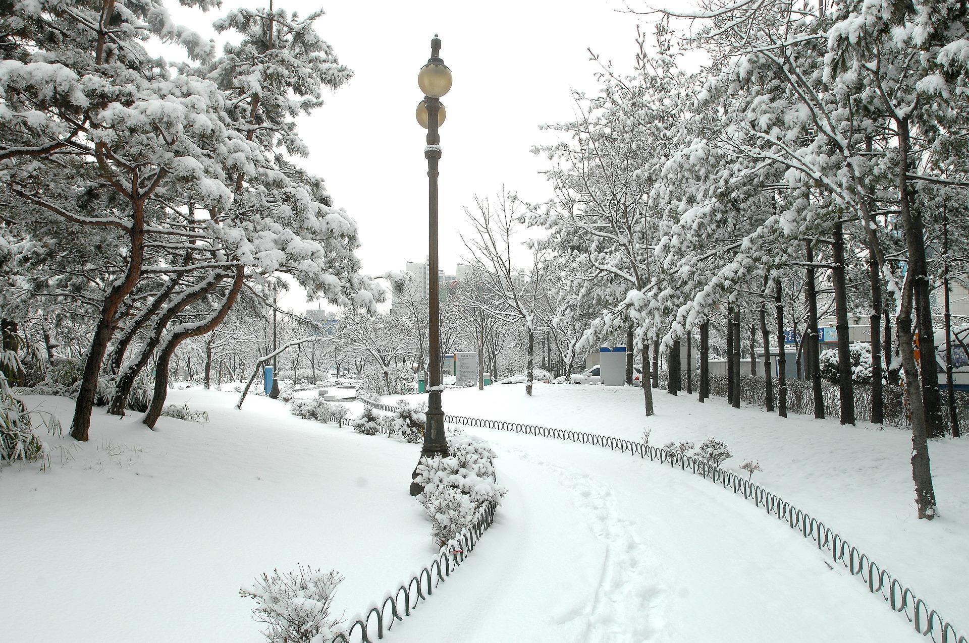hiver-en-fond-d-ecran_free-download-pictures_city