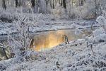 hiver-en-fond-d-ecran_free-download-pictures_neige