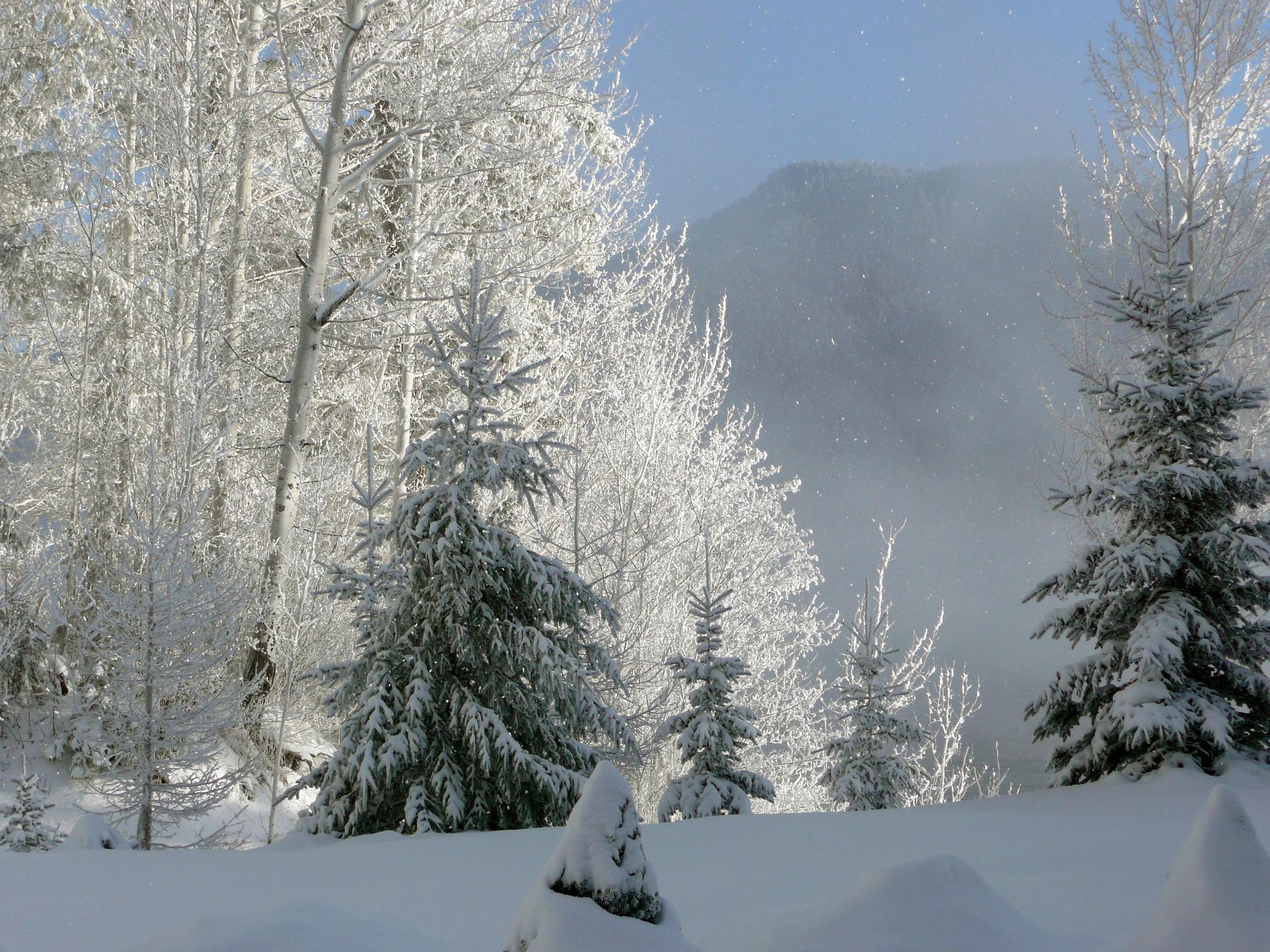 photos-hiver-HD_widescreen_wallaper-to-download_shoot