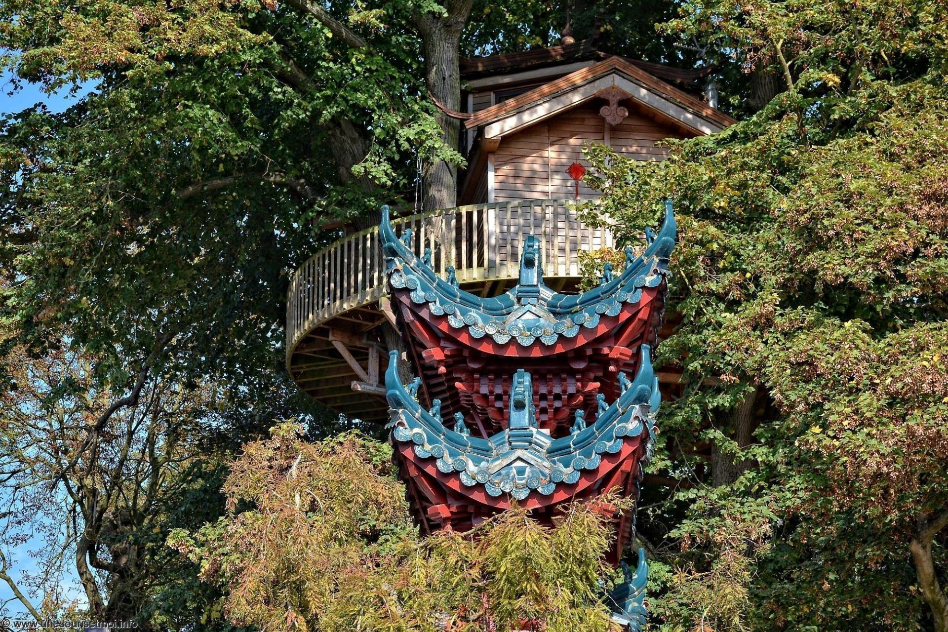 une-cabane-dans-les-arbres-photo-de-la-chine_1