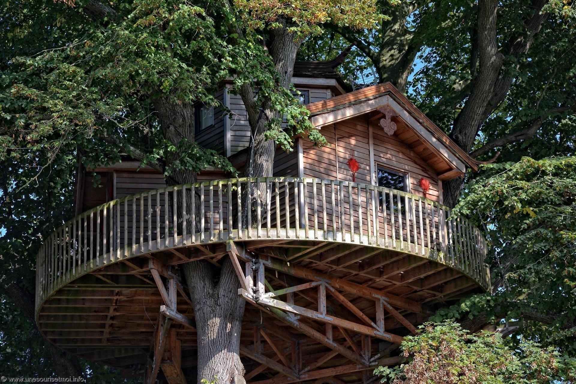 une-cabane-dans-les-arbres-photo-de-la-chine_2