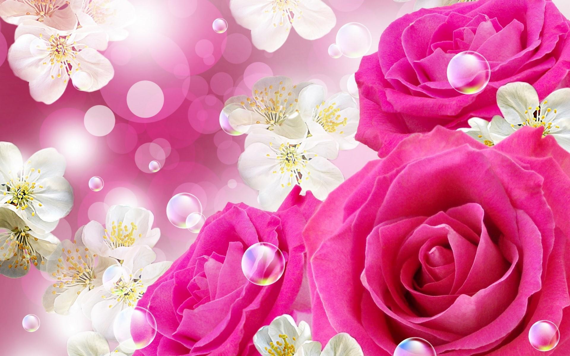 Fonds D'écran Nature: Les Fleurs Arrivent En Grand Format