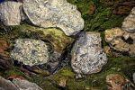 geode-mineraux-et-cristaux-en-HDR_5