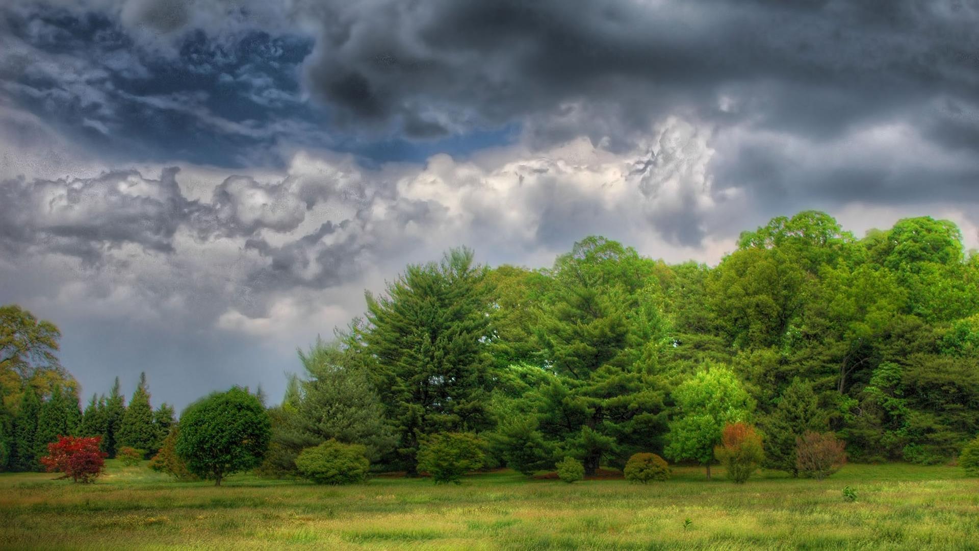 le-temps-est-a-l-orage