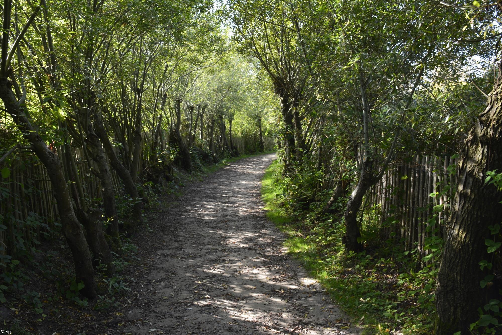 parc-du-marquenterre_promenade-dans-la-verdure_15