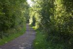 terril-de-pinchonval_promenade-dans-la-verdure_04