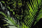 grunge_tree