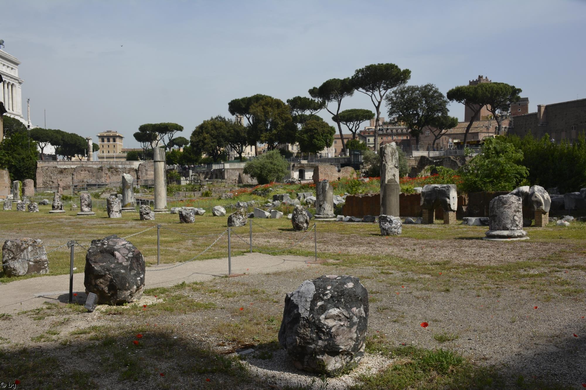 forum-romain_5