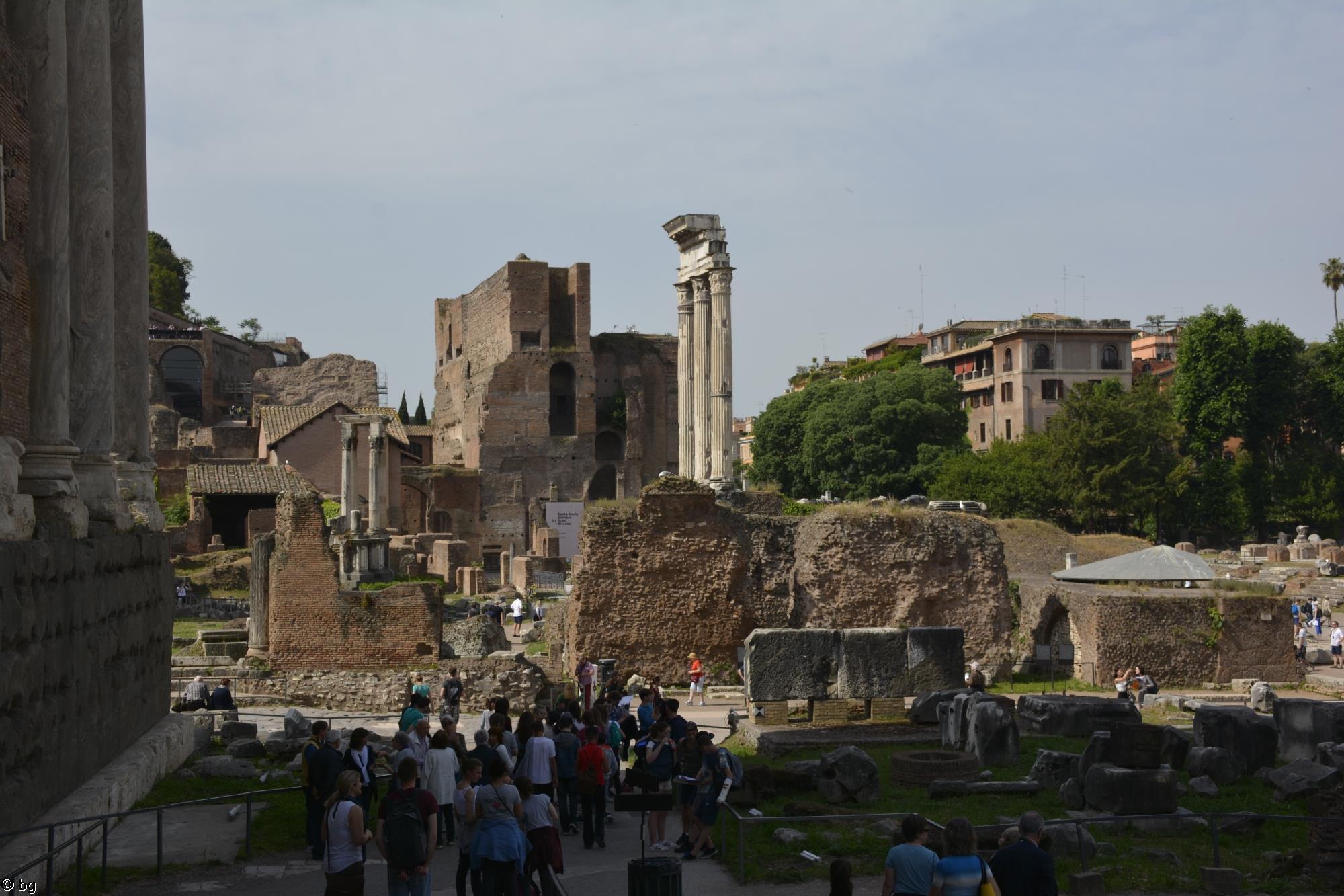 forum-romain_debut-de-la-visite