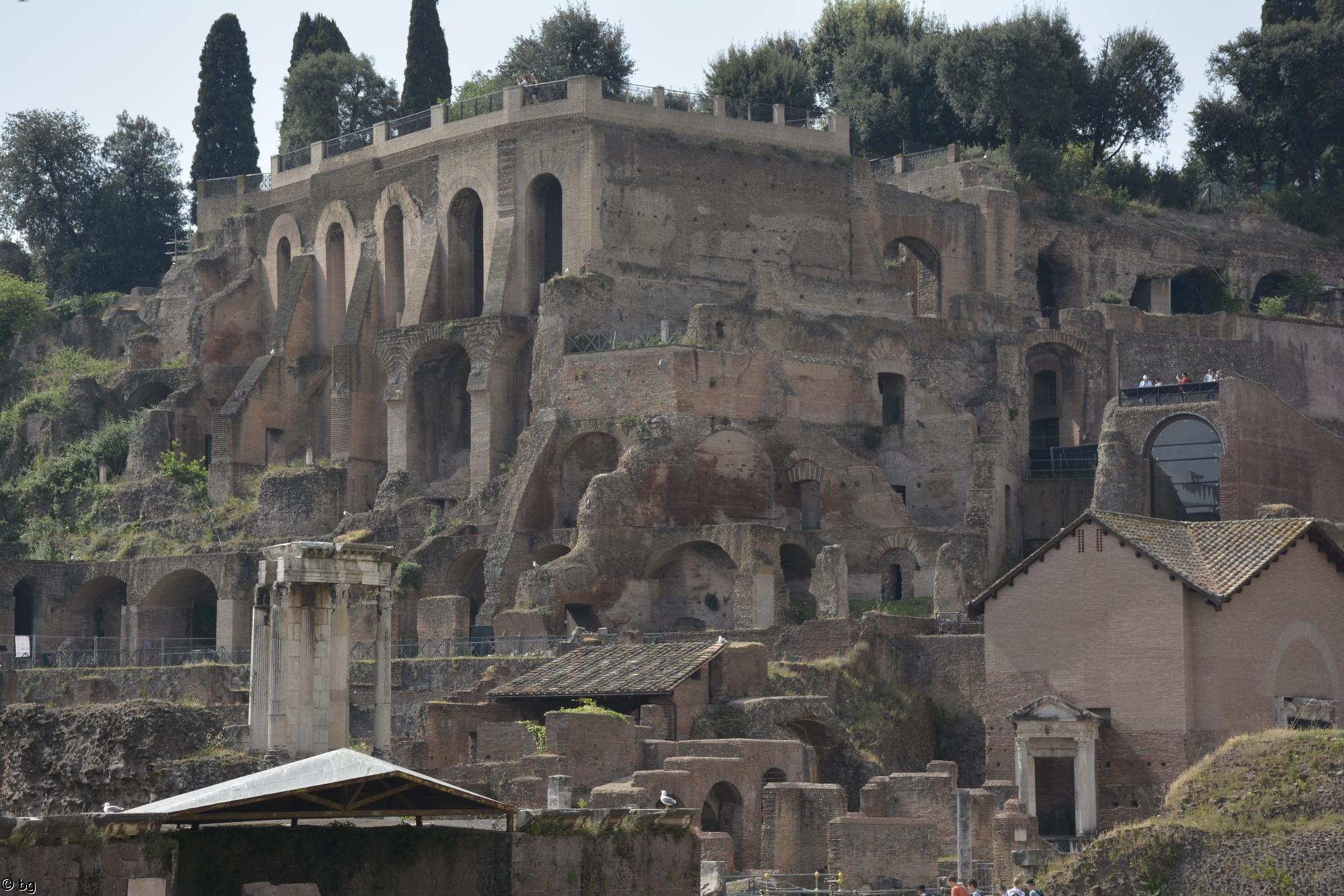 gros-plan_visiter-rome-photos-du-forum-romain_3