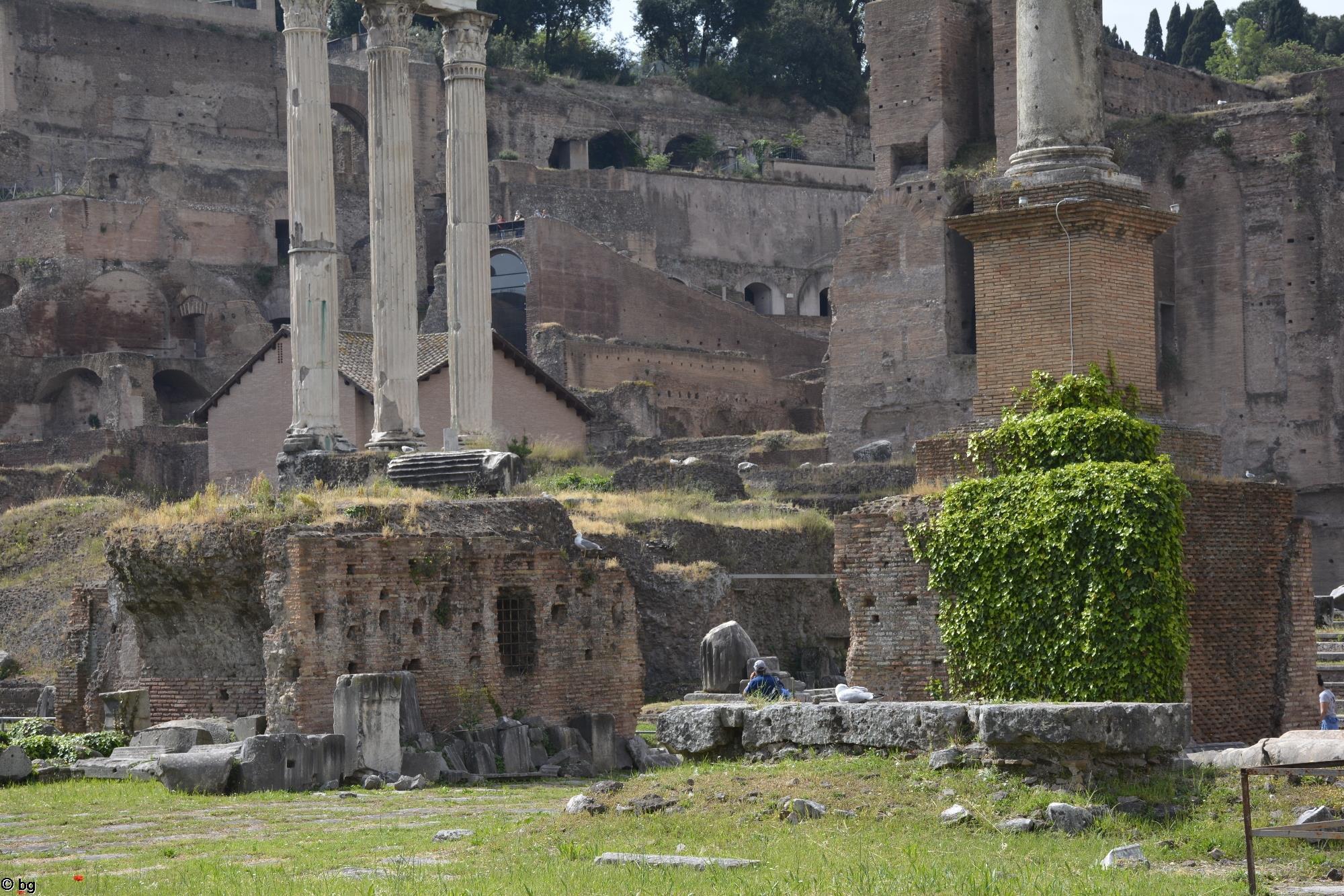 tourisme-culturel_visite-de-rome_4