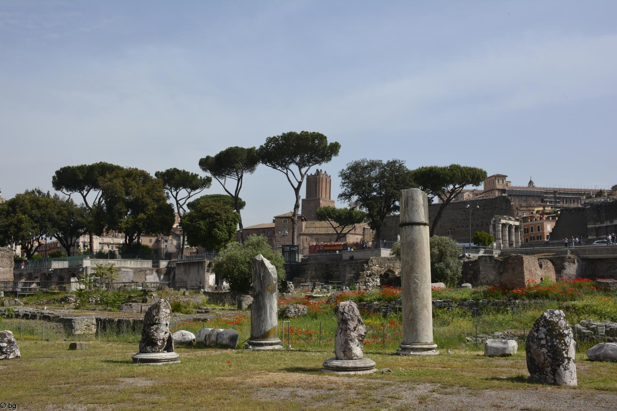 visiter-rome-le-forum-romain_4