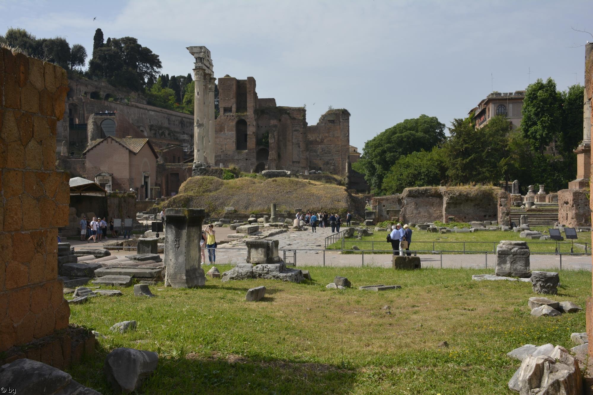 visiter-rome-le-forum-romain_5