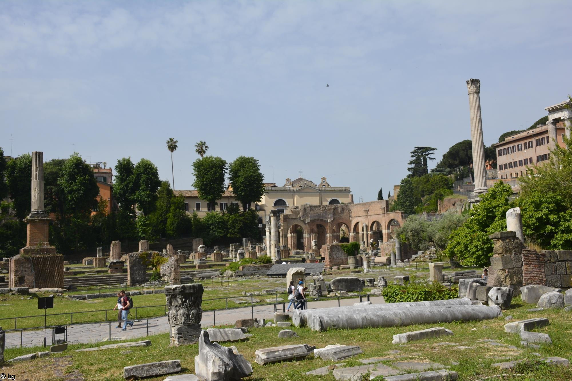 visiter-rome-photos-du-forum-romain_1