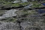 bords-de-mer_photographies_2