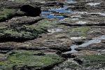 bords-de-mer_photographies_3