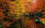 automne_fonds-ecran-gratuits_paysage_2