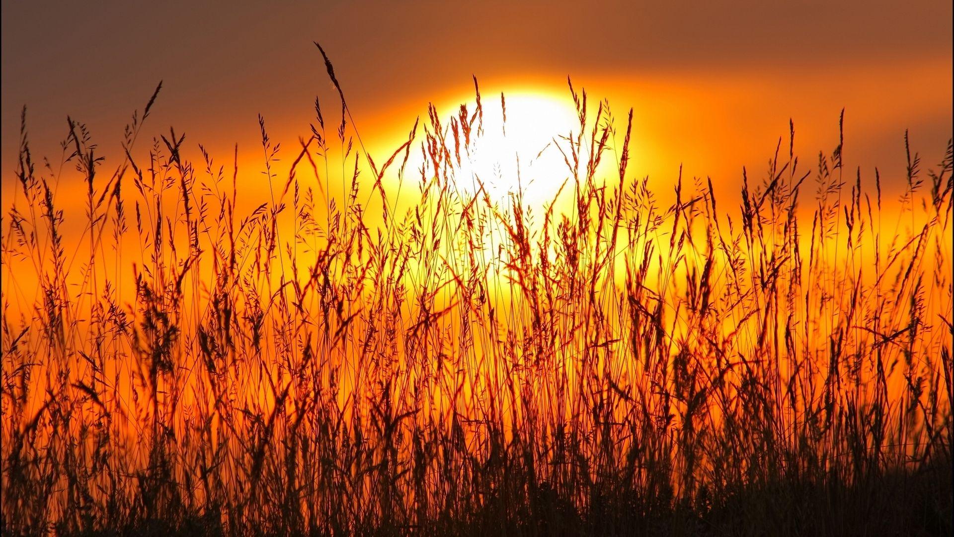 coucher-de-soleil_paysage-hd-fond-ecran_4