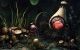 sympa-sous-la-mer_fonds-et-images-surprenantes_telechargement_07