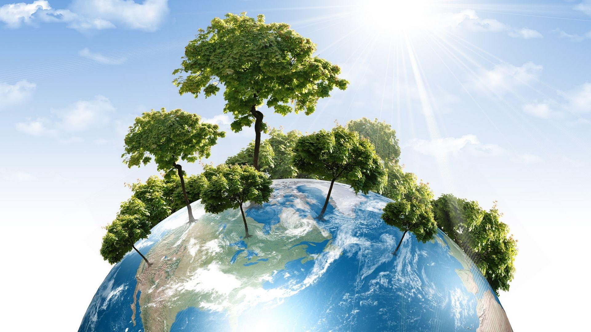 terre-et-vegetation