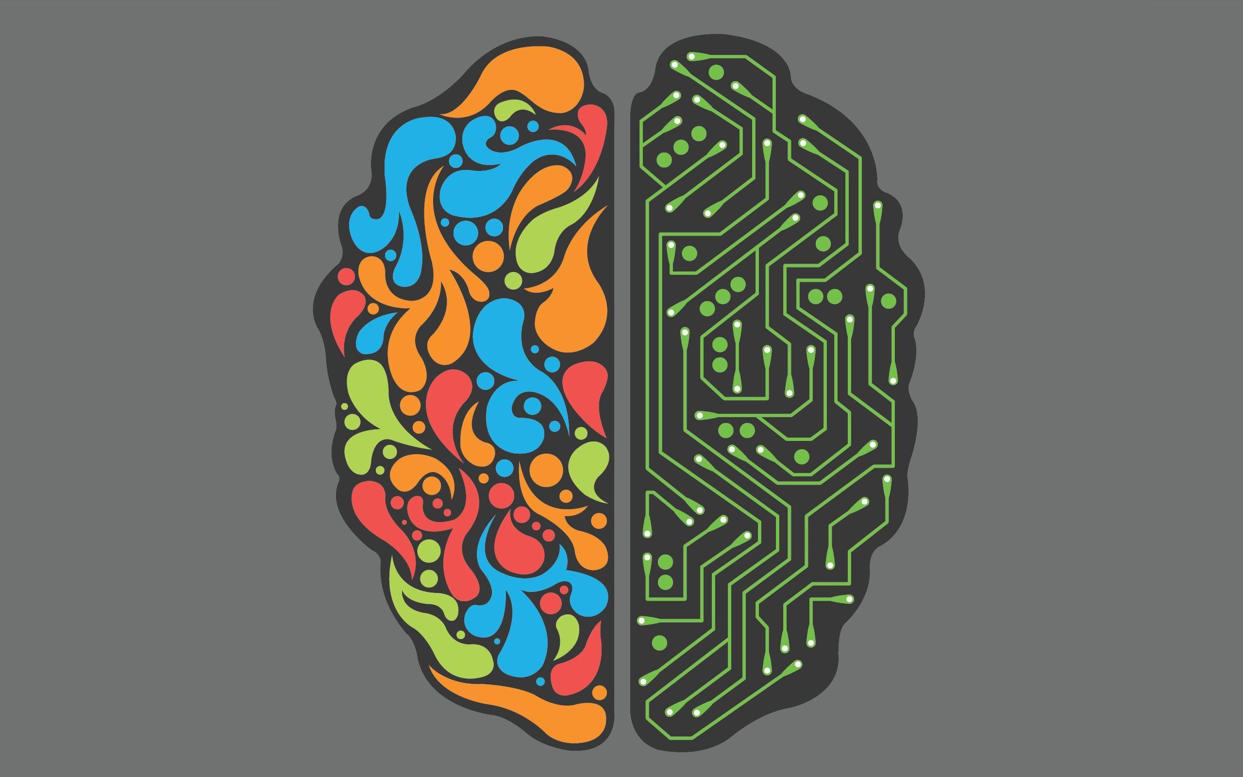 cerveau-de-geek