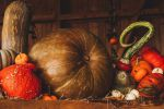 figures-halloween
