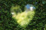 coeur-symbole-amoureux