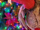 decorations-pas-cher-pour-noel