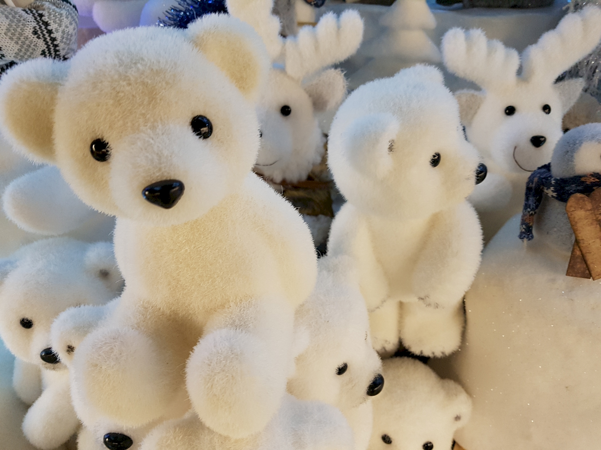 oursons-gratuits-noel-blanc