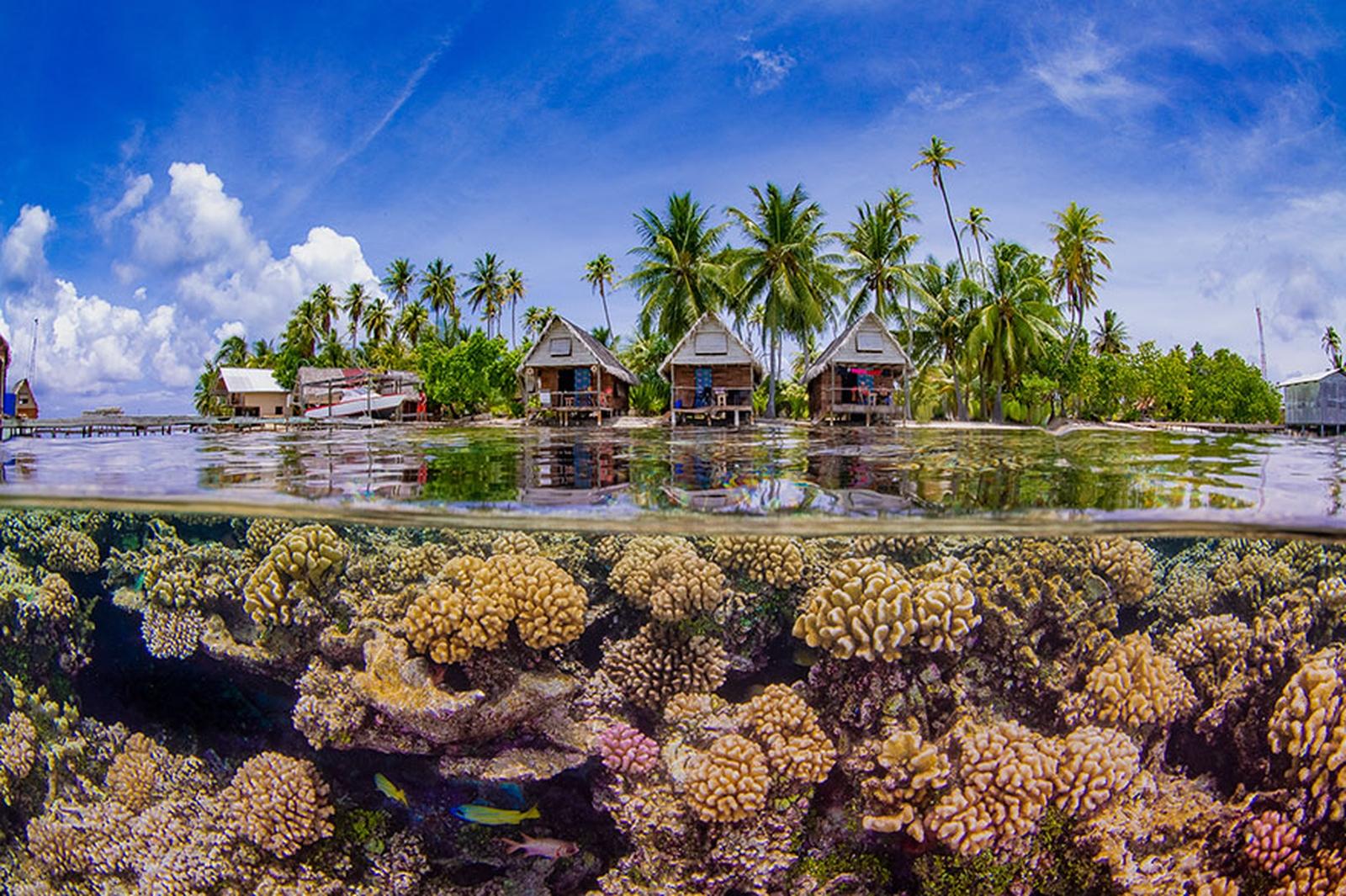concours-2019-photo-sous-marine