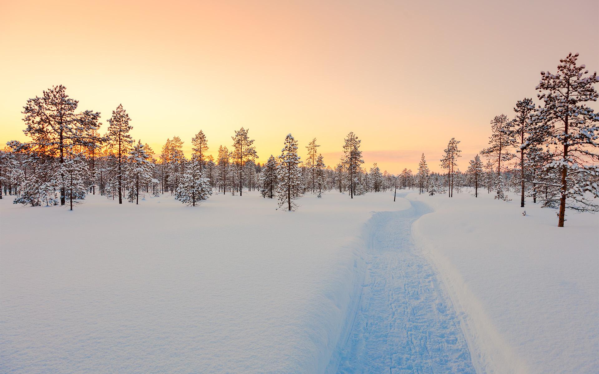 neige-et-ski-de-fond-en-montagne